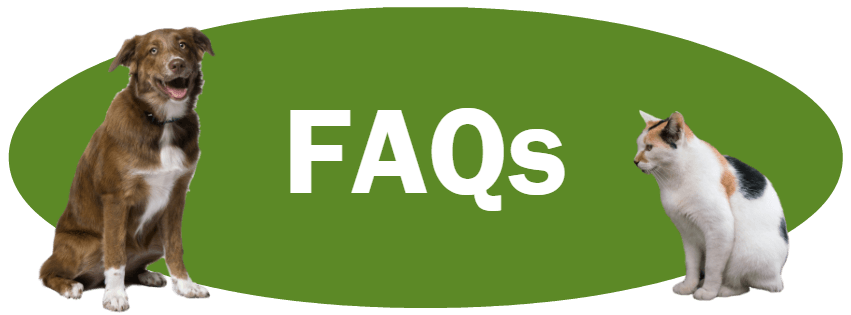 CLICK HERE for answers to frequently asked questions.
