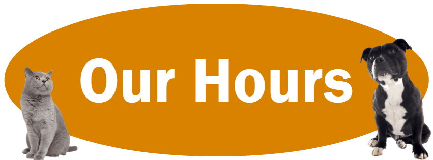 CLICK HERE for find our business hours.