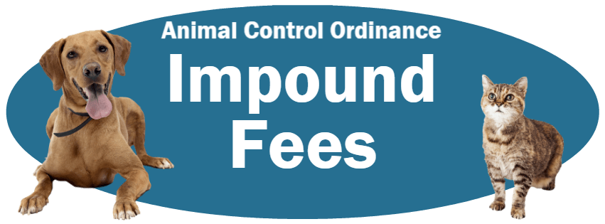 CLICK HERE to read the Impound Fees section of the Animal Control Ordinance