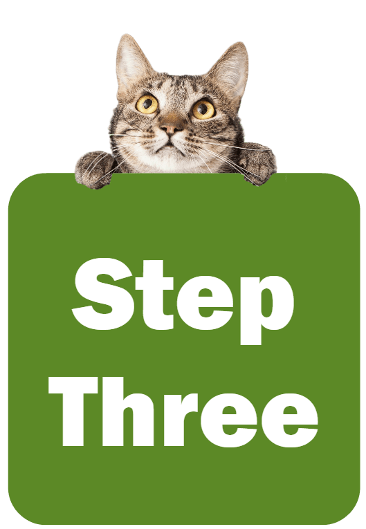 Cat holding a sign that says Step Three
