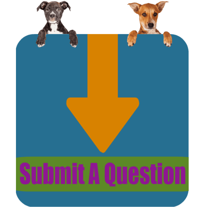 CLICK HERE To Submit Your Question About Adopting Dogs ONLINE NOW!