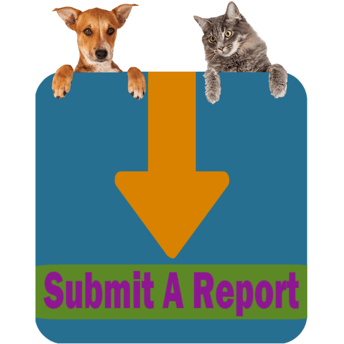 CLICK HERE To Submit An Online Animal Control Report