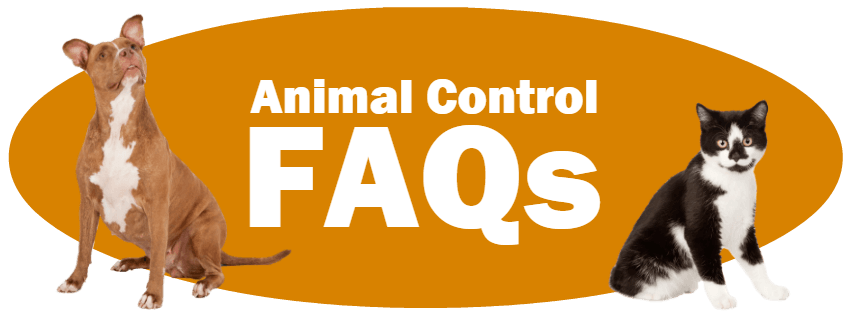 CLICK HERE for the answers to frequently asked Animal Control questions.