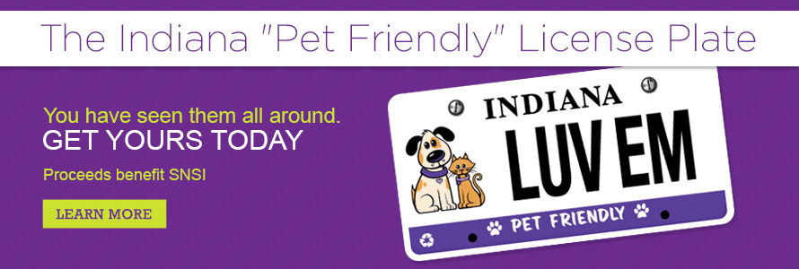 Pet Friendly License plate page banner