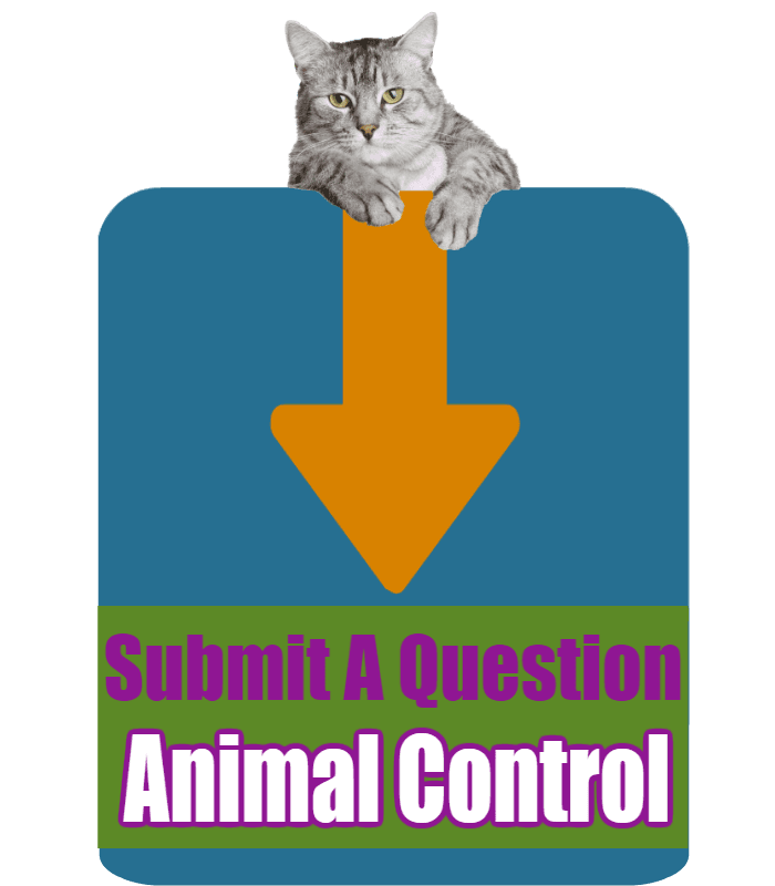 CLICK HERE to submit your online question about Animal Control