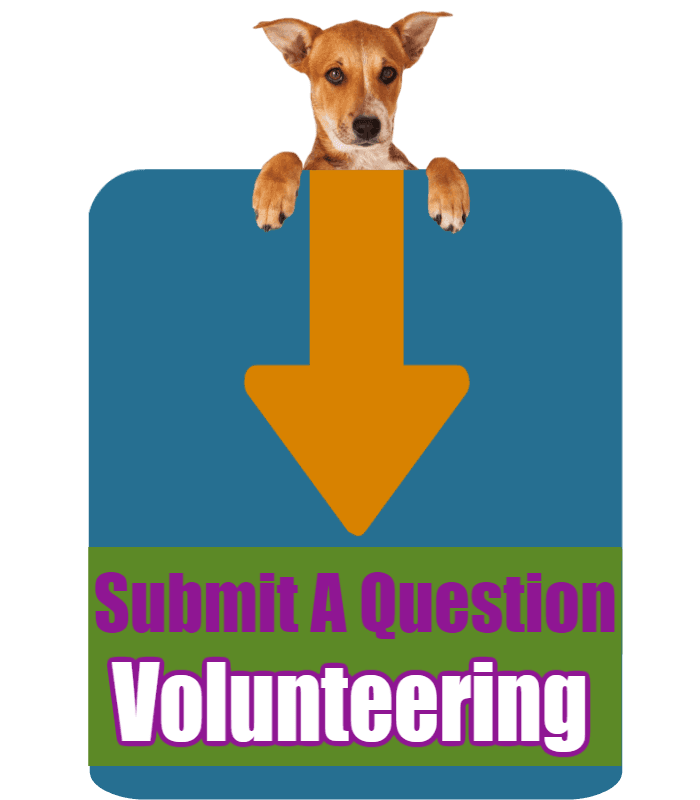 CLICK HERE to submit your online question about Volunteering