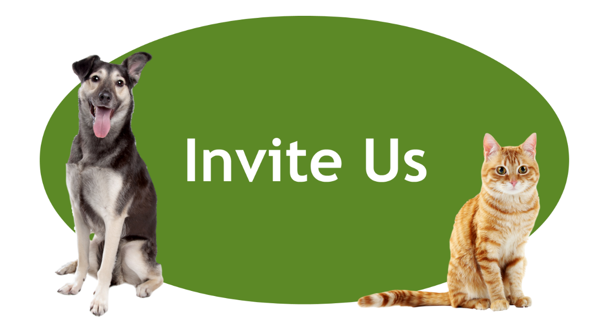 Invite Us Page Banner
