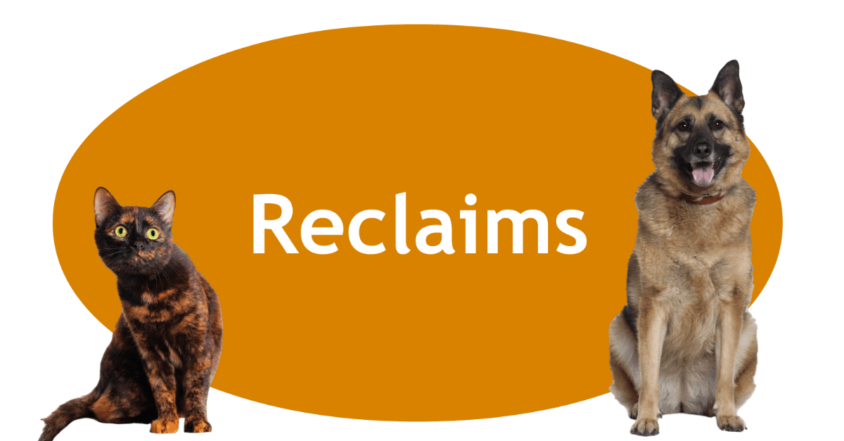 Reclaims Page Banner