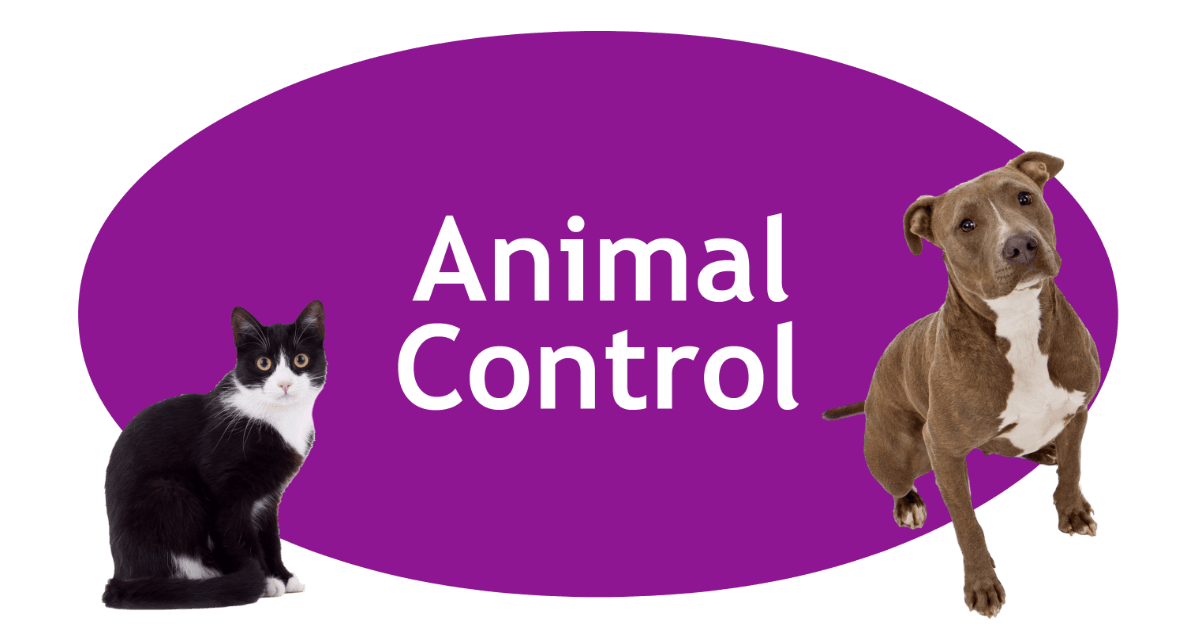 Animal Control Page Banner
