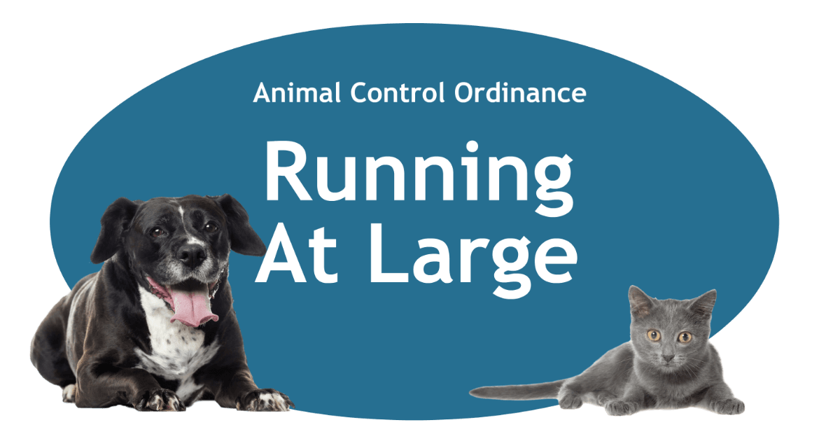 Running At Large Page BAnner