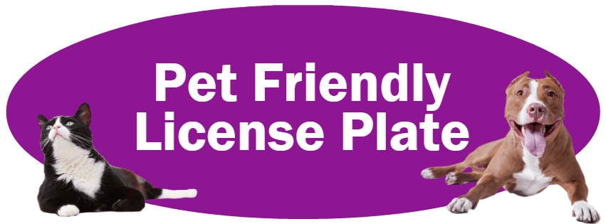 CLICK HERE to learn more about the Indiana Pet Friendly License Plate